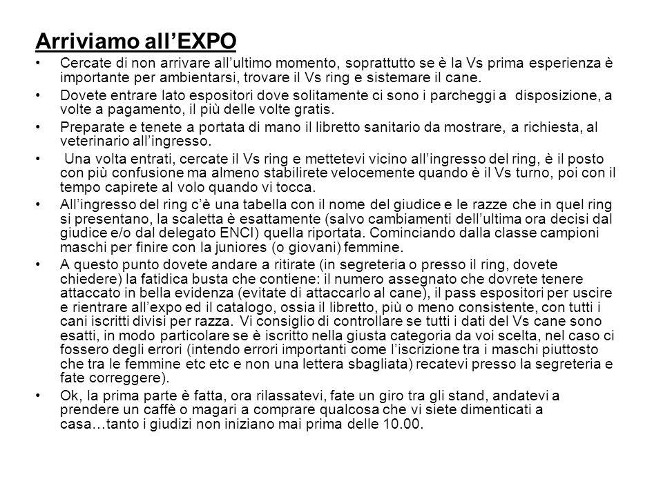 Arriviamo all'EXPO Cercate di non arrivare all'ultimo momento, soprattutto se è la Vs prima esperienza è importante per ambientarsi, trovare il Vs rin