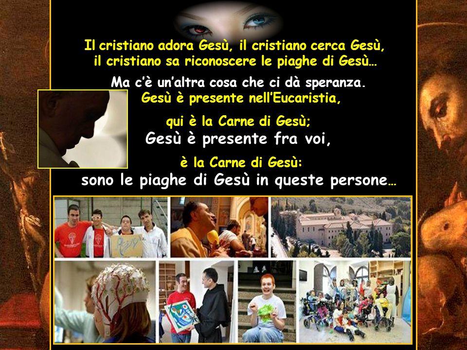 Ecco perché oggi sono qui: la mia visita è soprattutto un pellegrinaggio di amore, per pregare sulla tomba di un uomo che si è spogliato di se stesso e si è rivestito di Cristo e, sull'esempio di Cristo, ha amato tutti, specialmente i più poveri e abbandonati, ha amato con stupore e semplicità la creazione di Dio… Da questo luogo in cui si vede l'amore concreto, dico a tutti: moltiplichiamo le opere della cultura dell'accoglienza, opere anzitutto animate da un profondo amore cristiano, amore a Cristo Crocifisso,…