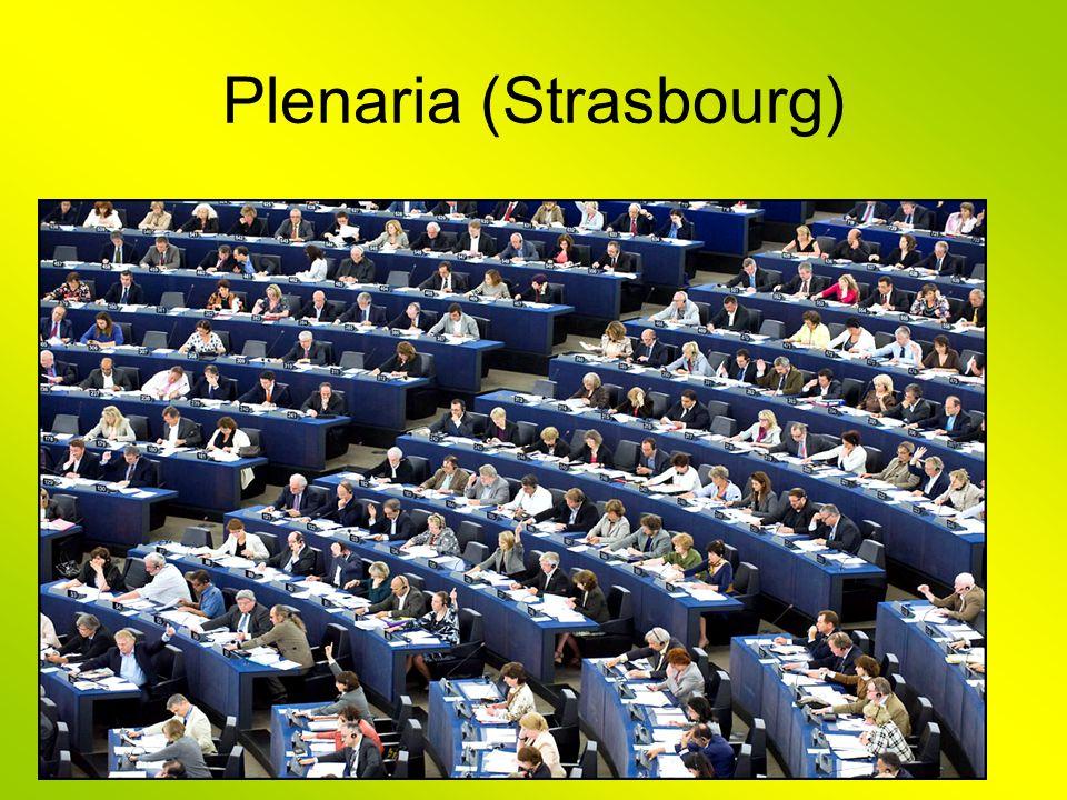 Plenaria (Strasbourg)