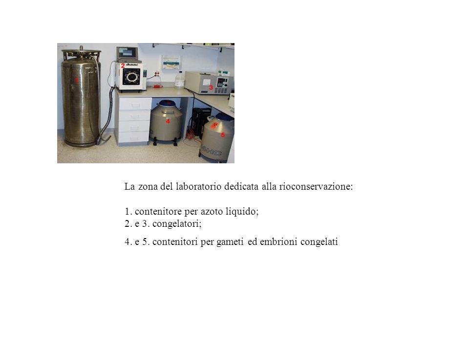 La zona del laboratorio dedicata alla rioconservazione: 1. contenitore per azoto liquido; 2. e 3. congelatori; 4. e 5. contenitori per gameti ed embri