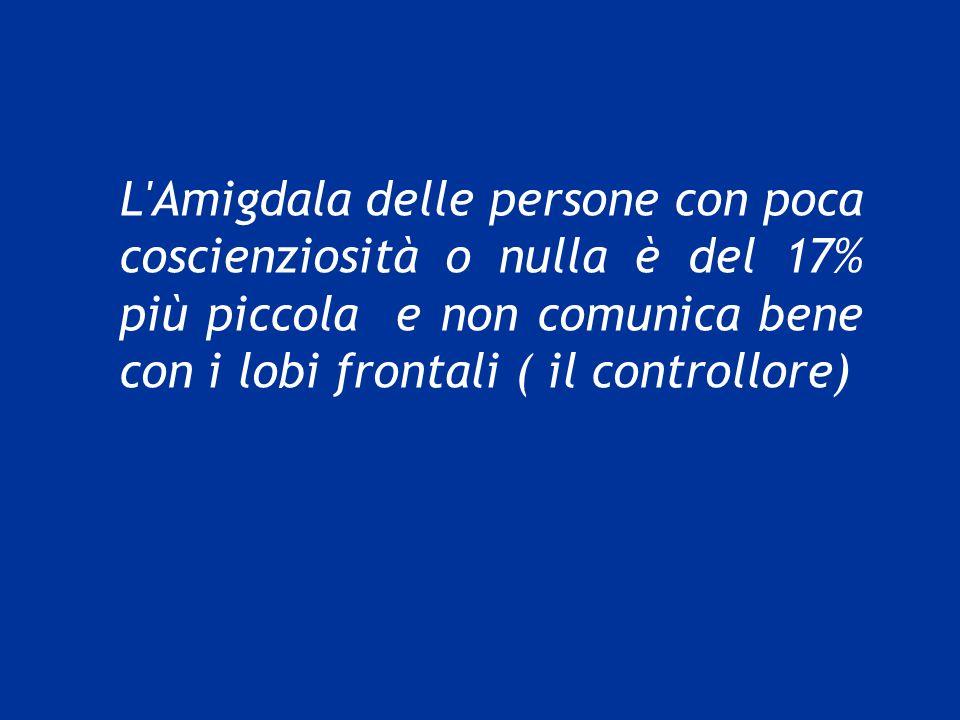 L'Amigdala delle persone con poca coscienziosità o nulla è del 17% più piccola e non comunica bene con i lobi frontali ( il controllore)
