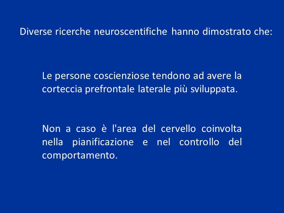 Le persone coscienziose tendono ad avere la corteccia prefrontale laterale più sviluppata. Non a caso è l'area del cervello coinvolta nella pianificaz