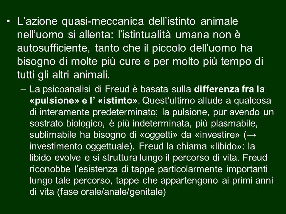 L'azione quasi-meccanica dell'istinto animale nell'uomo si allenta: l'istintualità umana non è autosufficiente, tanto che il piccolo dell'uomo ha bisogno di molte più cure e per molto più tempo di tutti gli altri animali.