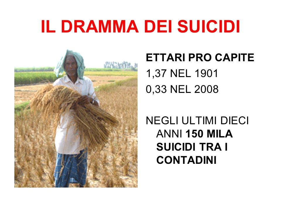 IL DRAMMA DEI SUICIDI ETTARI PRO CAPITE 1,37 NEL 1901 0,33 NEL 2008 NEGLI ULTIMI DIECI ANNI 150 MILA SUICIDI TRA I CONTADINI