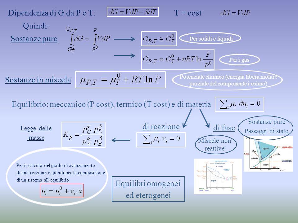 Sostanze pure Per solidi e liquidi Per i gas Dipendenza di G da P e T:T = cost Quindi: Sostanze in miscela Potenziale chimico (energia libera molare parziale del componente i-esimo) Equilibrio: meccanico (P cost), termico (T cost) e di materia di fase di reazione Legge delle masse Per il calcolo del grado di avanzamento di una reazione e quindi per la composizione di un sistema all'equilibrio Equilibri omogenei ed eterogenei Sostanze pure Passaggi di stato Miscele non reattive