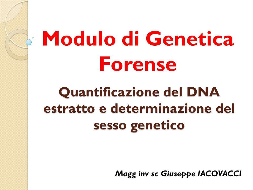 Quantificazione del DNA estratto e determinazione del sesso genetico Modulo di Genetica Forense Magg inv sc Giuseppe IACOVACCI