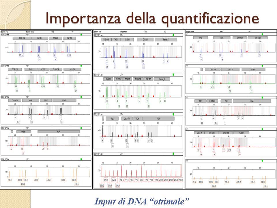 """Importanza della quantificazione Input di DNA """"ottimale"""""""