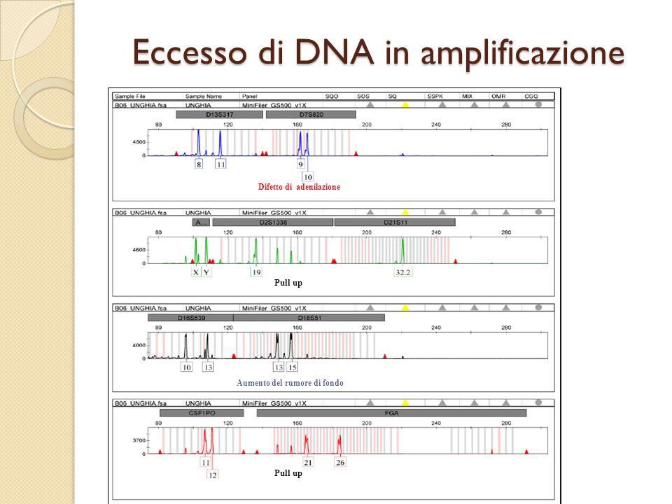 Difetto di DNA in amplificazione In queste condizioni l'analisi risulta affetta da problemi stocastici (che possiamo ovviare se aumentiamo il DNA in PCR) Se invece è un problema legato alla scarsa disponibilità di templato dobbiamo interpretare il dato con un approccio LCN