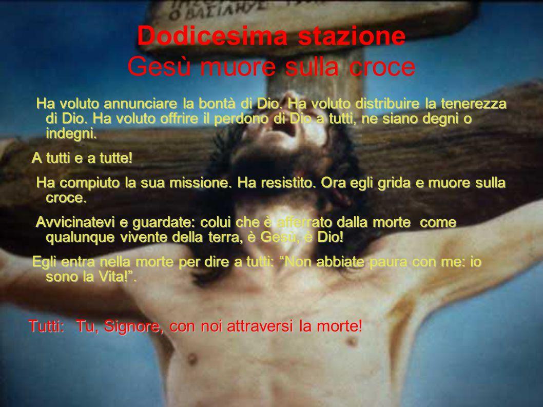 Dodicesima stazione Gesù muore sulla croce Ha voluto annunciare la bontà di Dio. Ha voluto distribuire la tenerezza di Dio. Ha voluto offrire il perdo