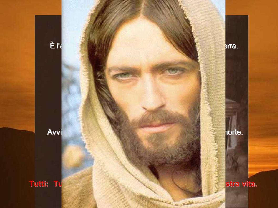 Quindicesima stazione Gesù è Risorto È l'aurora. La notte è fuggita, la luce invade il cielo e la terra. È l'aurora. La notte è fuggita, la luce invad
