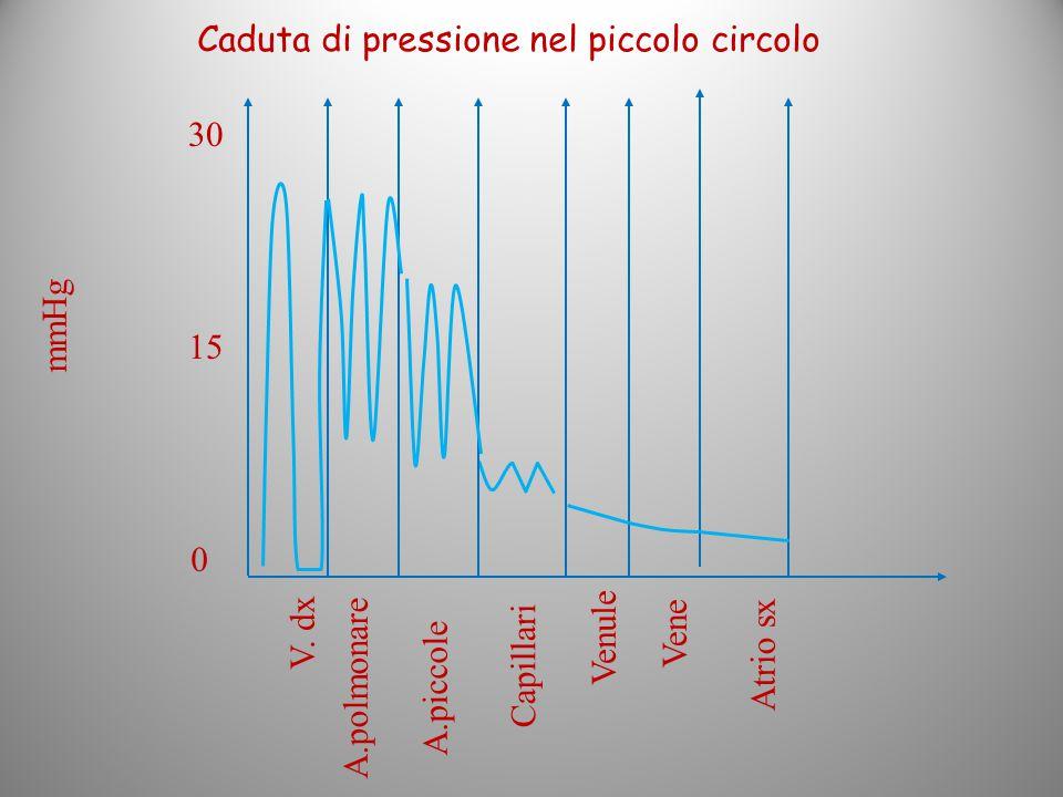 0 30 mmHg V. dx Atrio sx 15 Capillari Venule Vene A.polmonare A.piccole Caduta di pressione nel piccolo circolo