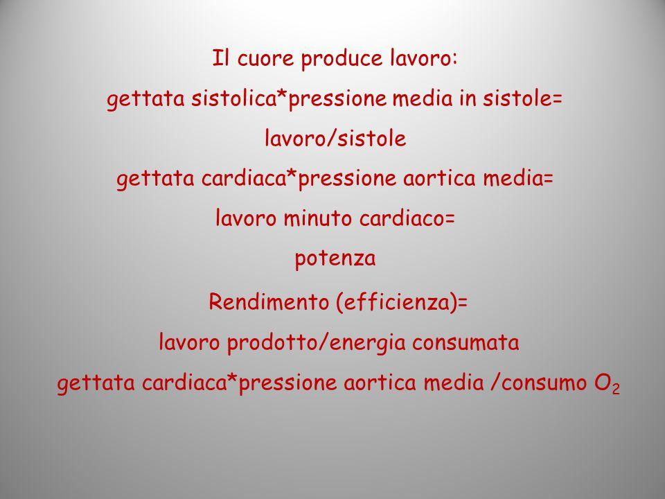 Il cuore produce lavoro: gettata sistolica*pressione media in sistole= lavoro/sistole gettata cardiaca*pressione aortica media= lavoro minuto cardiaco