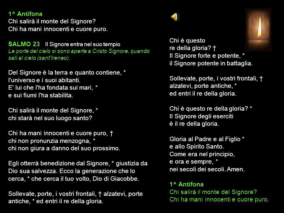 10 FEBBRAIO 2015 MARTEDÌ - I SETTIMANA DEL SALTERIO DEL T.