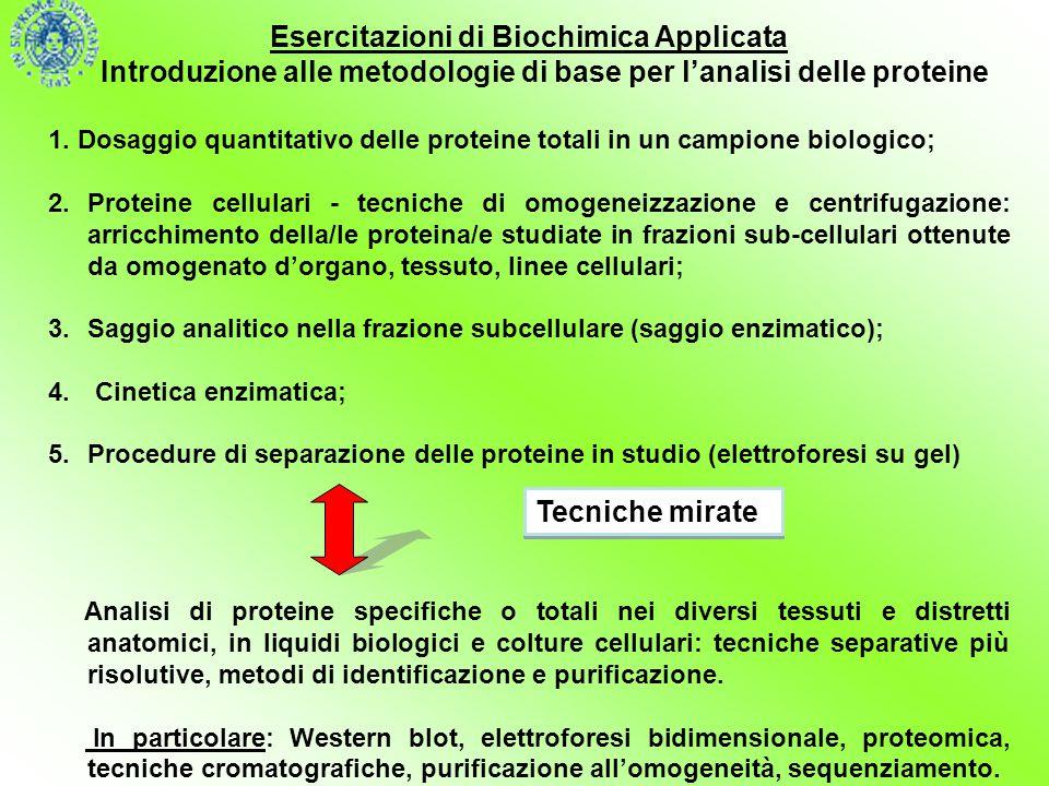 Esercitazioni di Biochimica Applicata Introduzione alle metodologie di base per l'analisi delle proteine 1. Dosaggio quantitativo delle proteine total