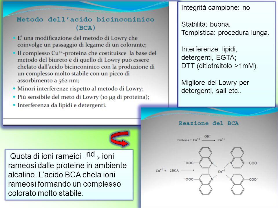 Quota di ioni rameici ioni rameosi dalle proteine in ambiente alcalino. L'acido BCA chela ioni rameosi formando un complesso colorato molto stabile. I