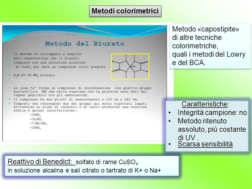 Scarsa sensibilità Reattivo di Benedict: solfato di rame CuSO 4 in soluzione alcalina e sali citrato o tartrato di K+ o Na+ Reattivo di Benedict: solf