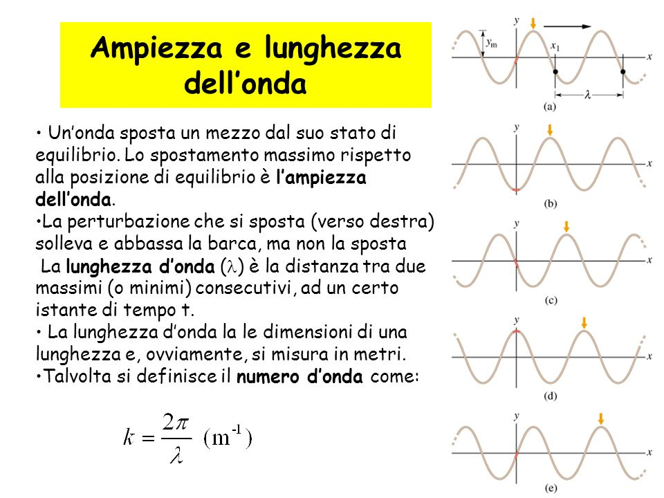 12 Ampiezza e lunghezza dell'onda Un'onda sposta un mezzo dal suo stato di equilibrio. Lo spostamento massimo rispetto alla posizione di equilibrio è