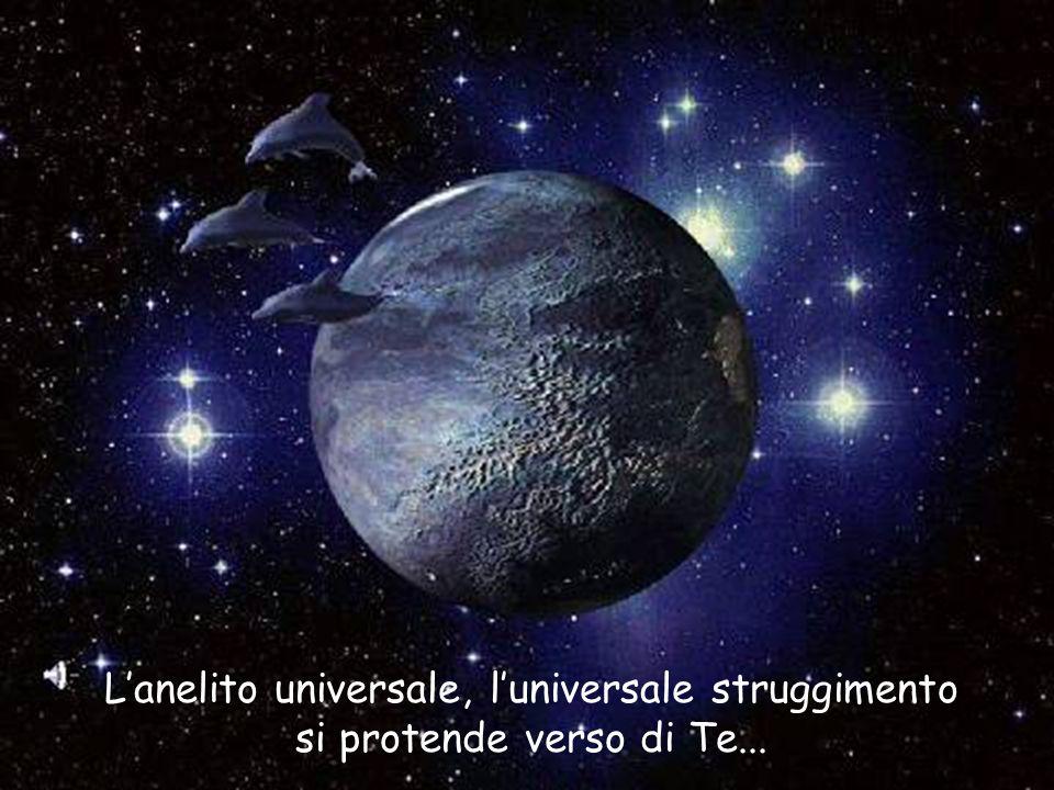 L'anelito universale, l'universale struggimento si protende verso di Te...