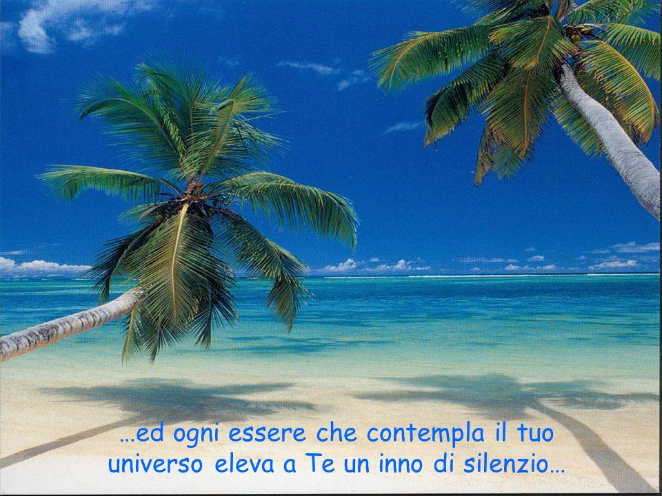 …ed ogni essere che contempla il tuo universo eleva a Te un inno di silenzio…