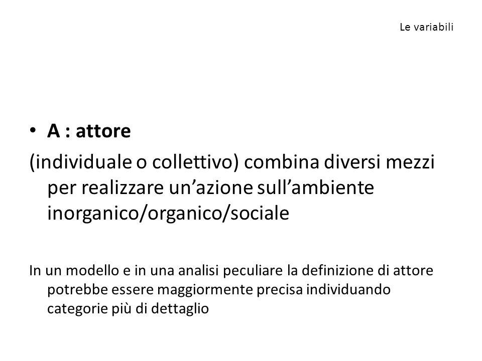 A : attore (individuale o collettivo) combina diversi mezzi per realizzare un'azione sull'ambiente inorganico/organico/sociale In un modello e in una