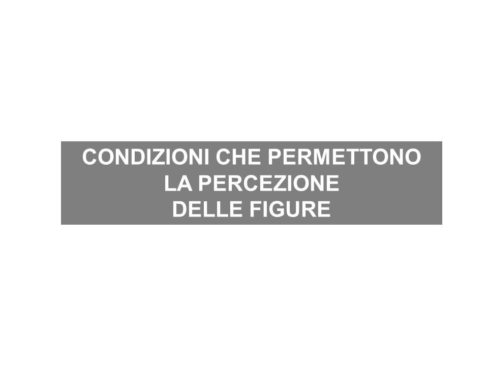 CONDIZIONI CHE PERMETTONO LA PERCEZIONE DELLE FIGURE