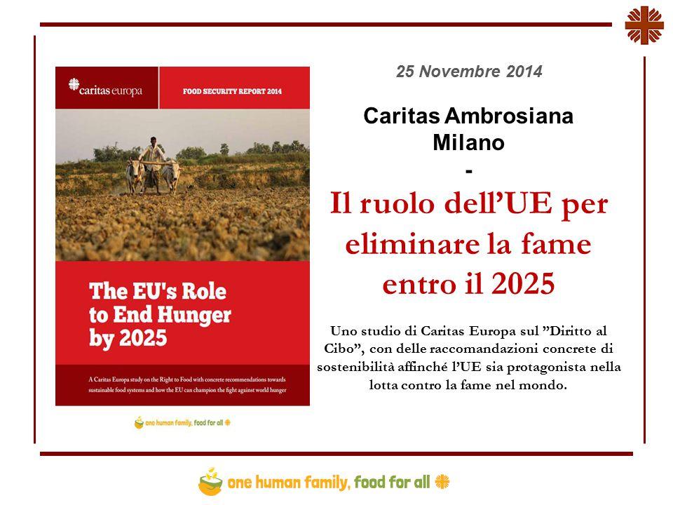 25 Novembre 2014 Caritas Ambrosiana Milano - Il ruolo dell'UE per eliminare la fame entro il 2025 Uno studio di Caritas Europa sul Diritto al Cibo , con delle raccomandazioni concrete di sostenibilità affinché l'UE sia protagonista nella lotta contro la fame nel mondo.