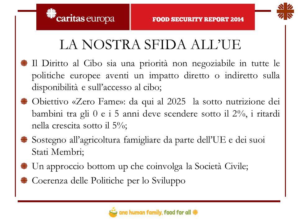 LA NOSTRA SFIDA ALL'UE Il Diritto al Cibo sia una priorità non negoziabile in tutte le politiche europee aventi un impatto diretto o indiretto sulla disponibilità e sull'accesso al cibo; Obiettivo «Zero Fame»: da qui al 2025 la sotto nutrizione dei bambini tra gli 0 e i 5 anni deve scendere sotto il 2%, i ritardi nella crescita sotto il 5%; Sostegno all'agricoltura famigliare da parte dell'UE e dei suoi Stati Membri; Un approccio bottom up che coinvolga la Società Civile; Coerenza delle Politiche per lo Sviluppo
