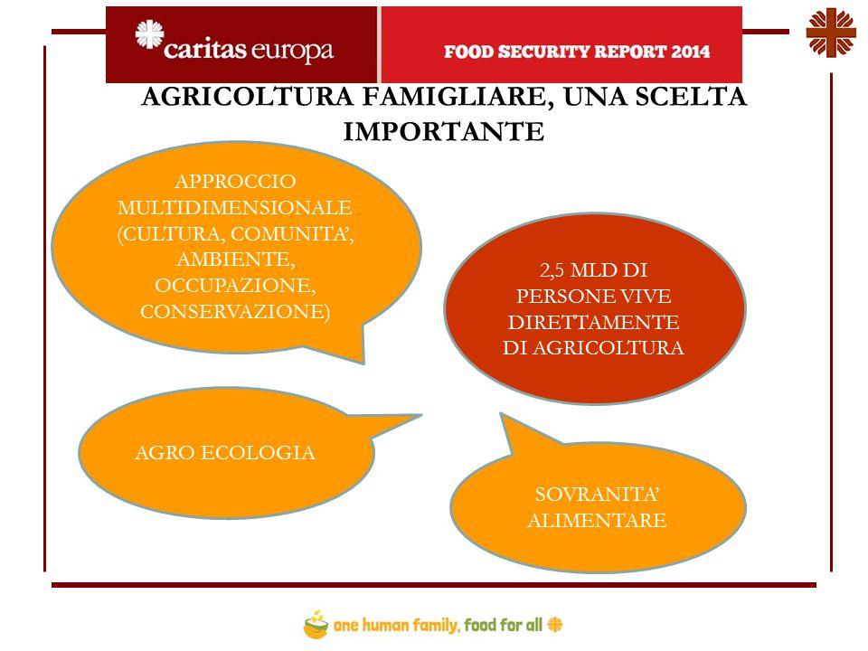 AGRICOLTURA FAMIGLIARE, UNA SCELTA IMPORTANTE 2,5 MLD DI PERSONE VIVE DIRETTAMENTE DI AGRICOLTURA APPROCCIO MULTIDIMENSIONALE (CULTURA, COMUNITA', AMBIENTE, OCCUPAZIONE, CONSERVAZIONE) AGRO ECOLOGIA SOVRANITA' ALIMENTARE