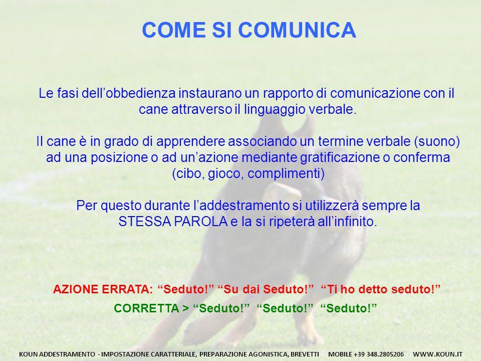 COME SI COMUNICA Le fasi dell'obbedienza instaurano un rapporto di comunicazione con il cane attraverso il linguaggio verbale.