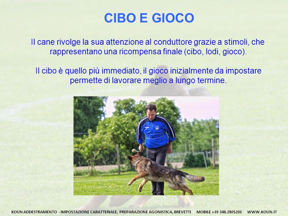 CIBO E GIOCO Il cane rivolge la sua attenzione al conduttore grazie a stimoli, che rappresentano una ricompensa finale (cibo, lodi, gioco). Il cibo è