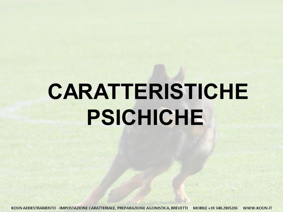 CARATTERISTICHE PSICHICHE KOUN ADDESTRAMENTO - IMPOSTAZIONE CARATTERIALE, PREPARAZIONE AGONISTICA, BREVETTI MOBILE +39 348.2805206 WWW.KOUN.IT