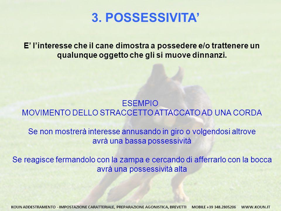 3. POSSESSIVITA' E' l'interesse che il cane dimostra a possedere e/o trattenere un qualunque oggetto che gli si muove dinnanzi. KOUN ADDESTRAMENTO - I
