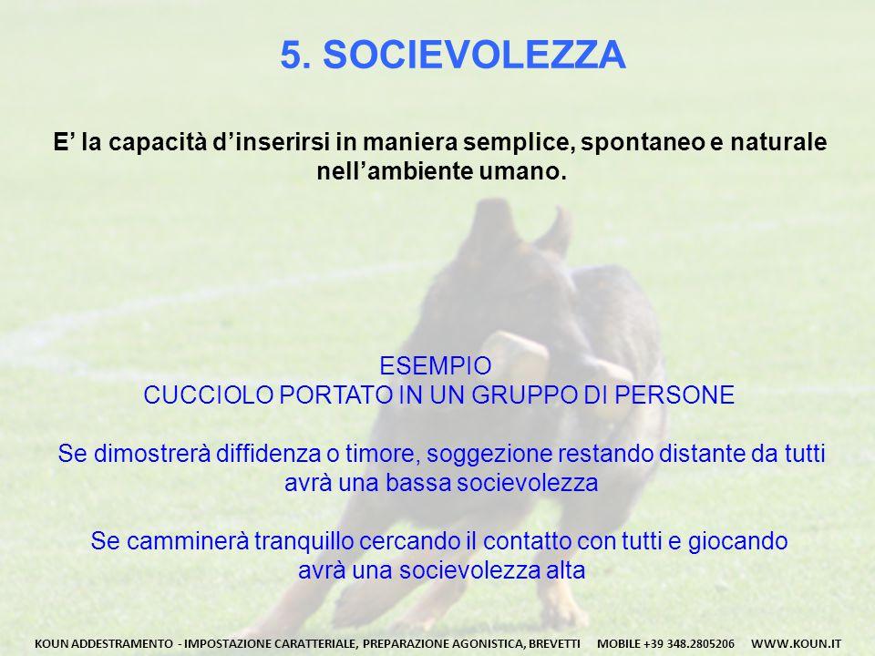5. SOCIEVOLEZZA E' la capacità d'inserirsi in maniera semplice, spontaneo e naturale nell'ambiente umano. KOUN ADDESTRAMENTO - IMPOSTAZIONE CARATTERIA