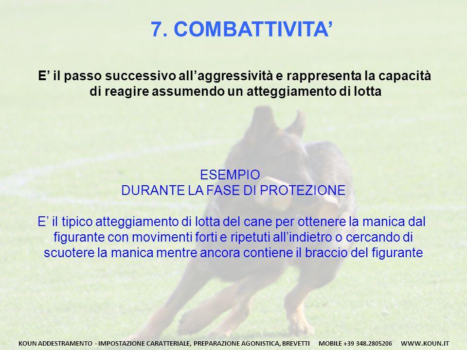 7. COMBATTIVITA' E' il passo successivo all'aggressività e rappresenta la capacità di reagire assumendo un atteggiamento di lotta KOUN ADDESTRAMENTO -