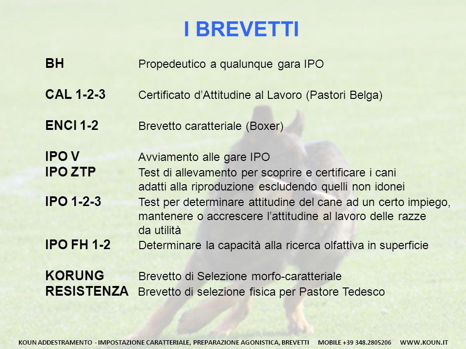 I BREVETTI BH Propedeutico a qualunque gara IPO CAL 1-2-3 Certificato d'Attitudine al Lavoro (Pastori Belga) ENCI 1-2 Brevetto caratteriale (Boxer) IP