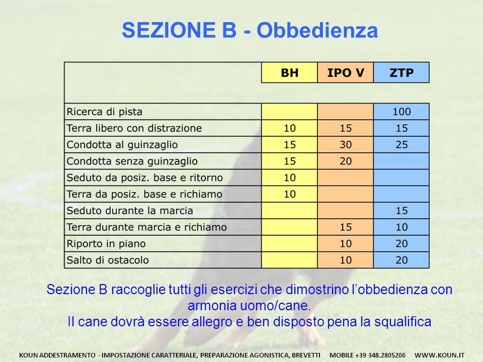 SEZIONE B - Obbedienza Sezione B raccoglie tutti gli esercizi che dimostrino l'obbedienza con armonia uomo/cane.