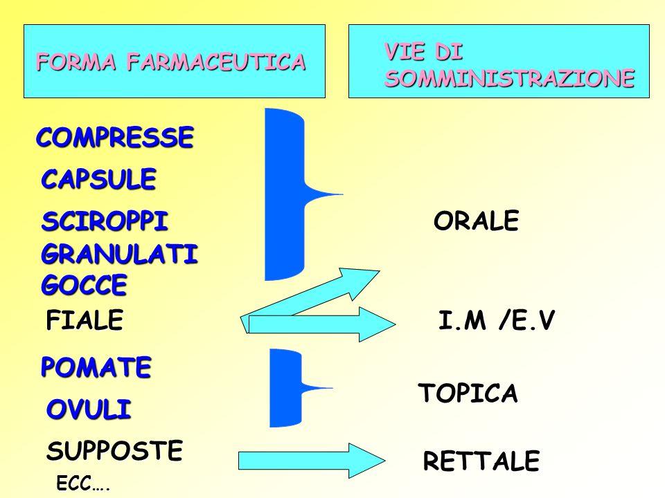 FORMA FARMACEUTICA VIE DI SOMMINISTRAZIONE COMPRESSE CAPSULE FIALE POMATE SUPPOSTE SCIROPPI OVULI GRANULATIGOCCE ORALE TOPICA RETTALE I.M /E.V ECC….