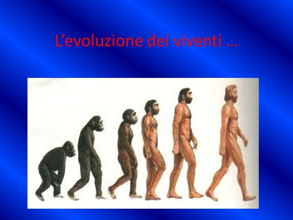 L'evoluzione dei viventi …