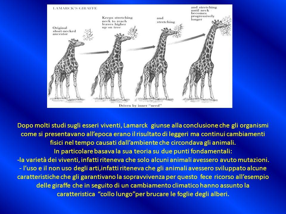 Lamarck credeva che le specie tramandassero i caratteri acquisiti ai discendenti,affermazione che poi si è rivelata errata poiché i caratteri fisici acquisiti durante la vita non si possono tramandare ai discendenti.