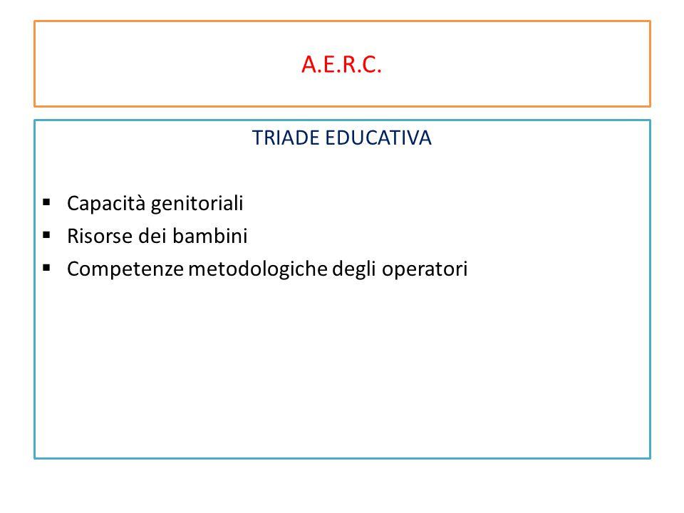 A.E.R.C. TRIADE EDUCATIVA  Capacità genitoriali  Risorse dei bambini  Competenze metodologiche degli operatori