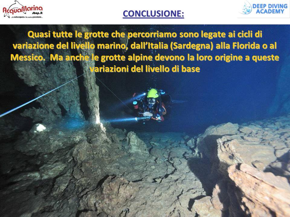 Quasi tutte le grotte che percorriamo sono legate ai cicli di variazione del livello marino, dall'Italia (Sardegna) alla Florida o al Messico. Ma anch