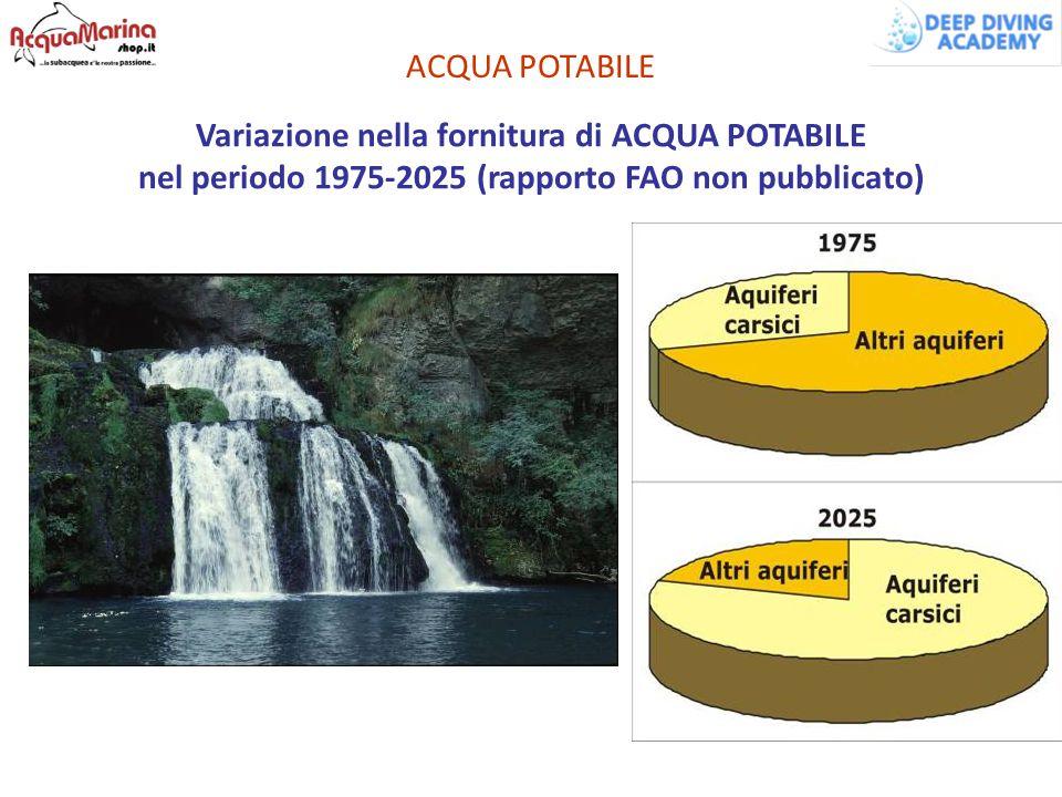 ACQUA POTABILE Variazione nella fornitura di ACQUA POTABILE nel periodo 1975-2025 (rapporto FAO non pubblicato)