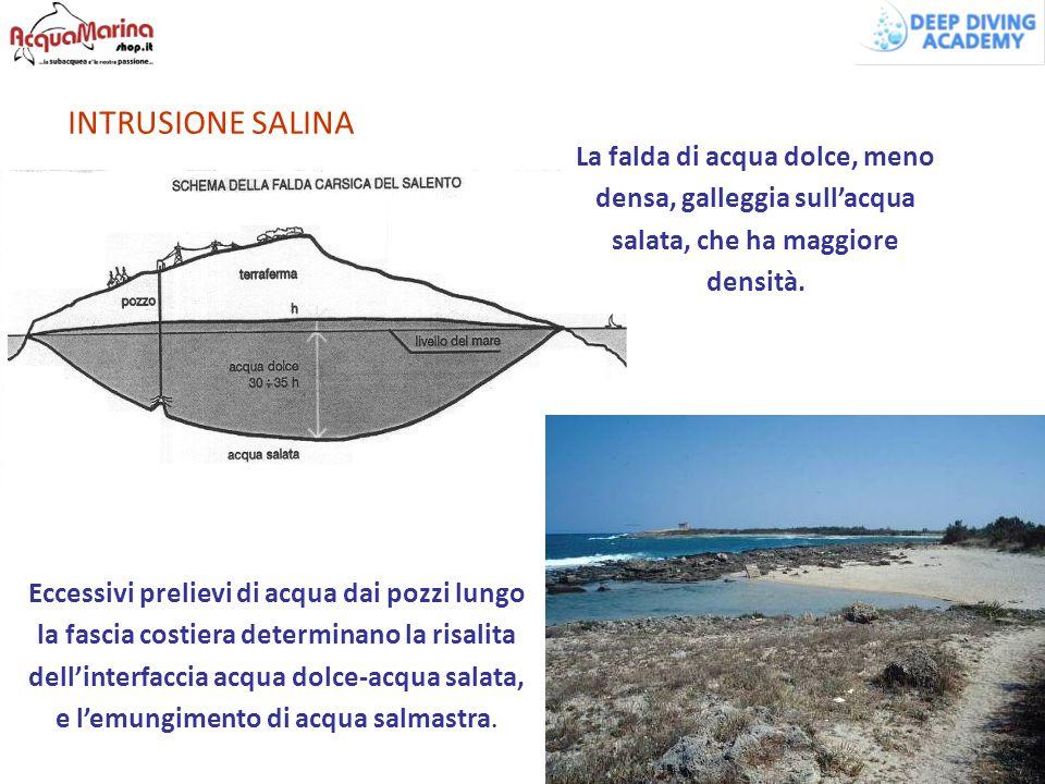 INTRUSIONE SALINA Eccessivi prelievi di acqua dai pozzi lungo la fascia costiera determinano la risalita dell'interfaccia acqua dolce-acqua salata, e