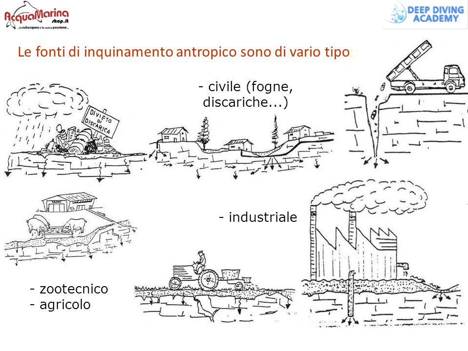 - civile (fogne, discariche...) - industriale - zootecnico - agricolo Le fonti di inquinamento antropico sono di vario tipo :