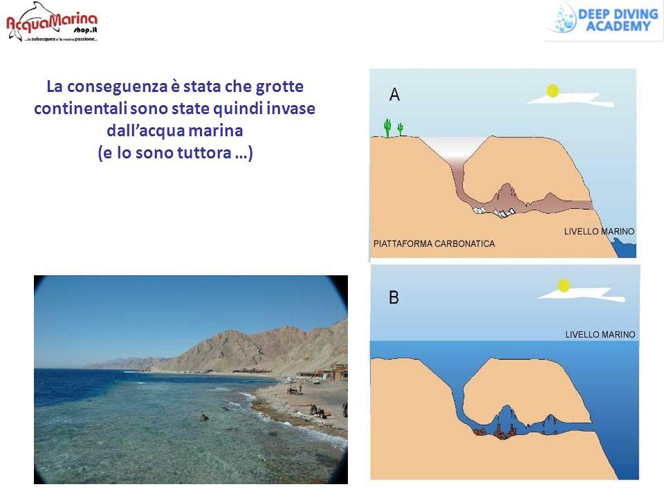 La conseguenza è stata che grotte continentali sono state quindi invase dall'acqua marina (e lo sono tuttora …)