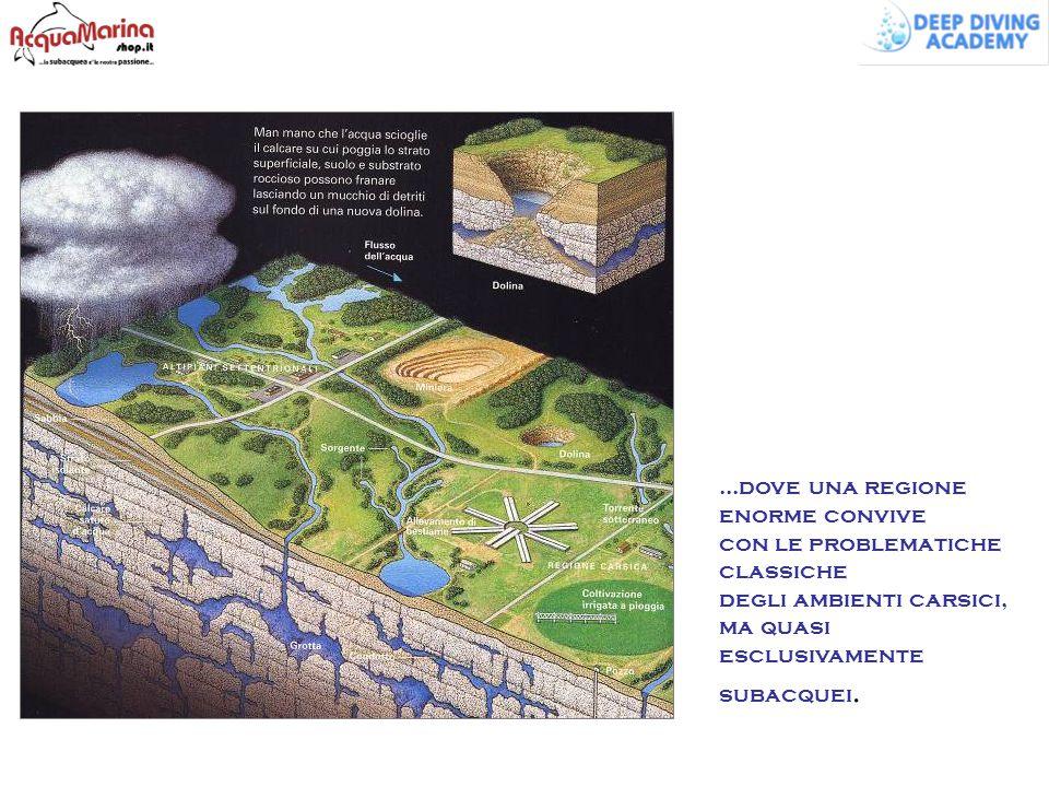 ...dove una regione enorme convive con le problematiche classiche degli ambienti carsici, ma quasi esclusivamente subacquei.