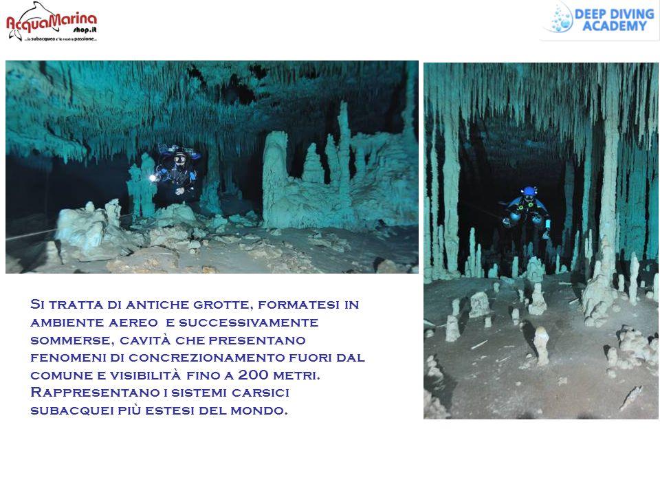 Si tratta di antiche grotte, formatesi in ambiente aereo e successivamente sommerse, cavità che presentano fenomeni di concrezionamento fuori dal comu