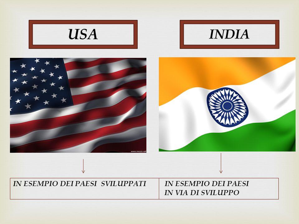USA INDIA IN ESEMPIO DEI PAESI SVILUPPATI IN ESEMPIO DEI PAESI IN VIA DI SVILUPPO
