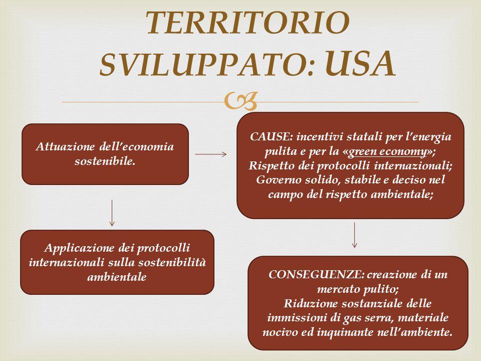  TERRITORIO SVILUPPATO: USA Attuazione dell'economia sostenibile. CAUSE: incentivi statali per l'energia pulita e per la «green economy»; Rispetto de