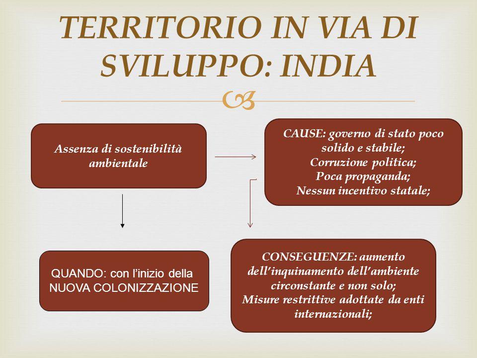  TERRITORIO IN VIA DI SVILUPPO: INDIA Assenza di sostenibilità ambientale CAUSE: governo di stato poco solido e stabile; Corruzione politica; Poca pr